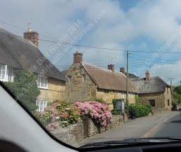 Thatched cottage village
