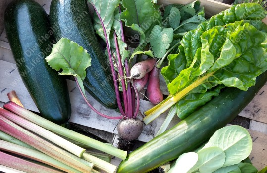 We stopped our veg box this week as now we can make our own! Rhubarb, courgettes, beetroot, chard, lettuce, radishes & cucumber!