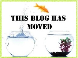 blog moved